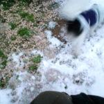 かるな4日目~初めての雪遊び